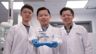Photo of دانشمندان دستگاه تولید فتوسنتز مصنوعی برای تولید اتیلن سبز تولید می کنند