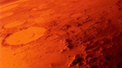 چگونه میکروارگانیسم ها در مریخ زندگی می کنند - اخبار زیست فناوری