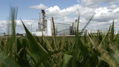 Photo of کارخانه اتانول سلولزی در رومانی ساخته خواهد شد