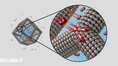 Photo of کاتالیزورهای حیاتی