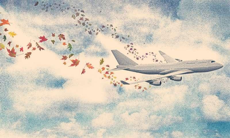 توسعه فرایندهایی برای افزایش حمل و نقل هوایی با اساس زیستی - اخبار زیست فناوری