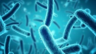 Photo of مکانیزم های جدید محافظت باکتری ها از خود در برابر آنتی بیوتیک ها