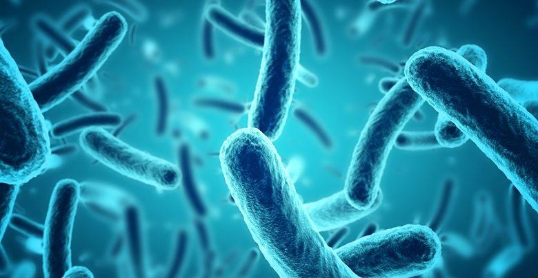 مکانیزم های جدید محافظت باکتری ها از خود در برابر آنتی بیوتیک ها- اخبار زیست فناوری