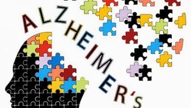 Photo of شناسایی عامل جدید در پاتوژنز بیماری آلزایمر