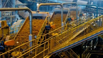 کارخانه سوخت زیستی با ظرفیت تولید 65 میلیون لیتر سالانه - اخبار زیست فناوری