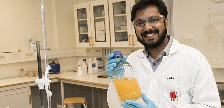 ساخت بیواتانول از ضایعات گیاهان موجود - اخبار زیست فناوری