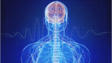 Photo of کنترل هویت مرکزی بدن