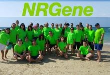 ارائه پیشرفت عمده ای در ژنوم آفتابگردان توسط NRGene - اخبار زیست فناوری