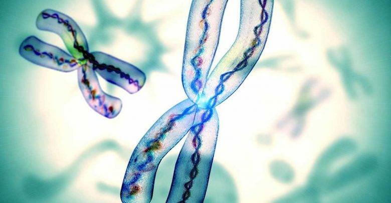 جدیدترین روش درمان بیماری سندروم x شکننده - اخبار زیست فناوری
