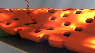 Photo of تشخیص اتفاقی موجب بهبود تشخیصDNA میشود!
