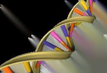 Photo of تیم عنصر DNA را شناسایی کرد که ممکن است باعث اختلال حرکتی نادر شود