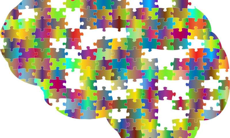 به روز رسانی نقشه سلول های مغزی بیماری های مختلف مغز به انواع سلول های خاص متصل میکند_اخبار زیست فناوری