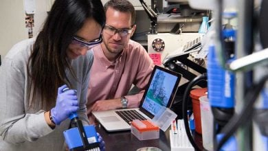 Photo of مهندسی بهتر آنزیم های سلولزی