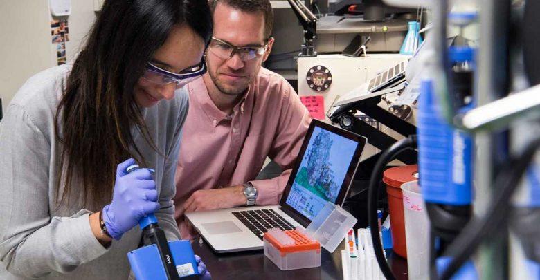 مهندسی بهتر آنزیم های آنزیمی سلولز - اخبار زیست فناوری
