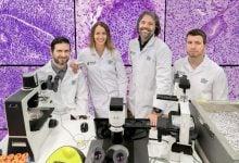پرده برداری از رموز سلولهای بنیادی - اخبار زیست فن
