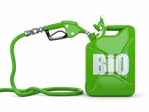 برنامه استرالیاییها برای استفاده گسترده از پسماندهای کشاورزی - اخبار زیست فناوری