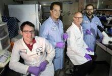 بیماری های عفونی -اخبار زیست فناوری