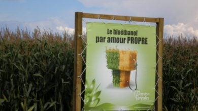 Photo of Commission's biofuels proposal may kill future investment, industry warns