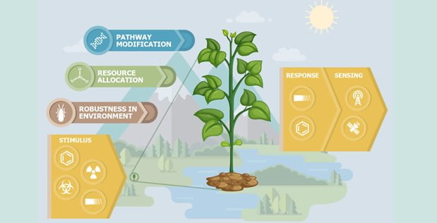 DARPA Wants to Use Genetic Modification to Turn Plants into Spy Tech - اخبار زیست فن