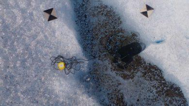 Photo of مقایسه میکرو ارگانیسم ها در مناطق قطبی