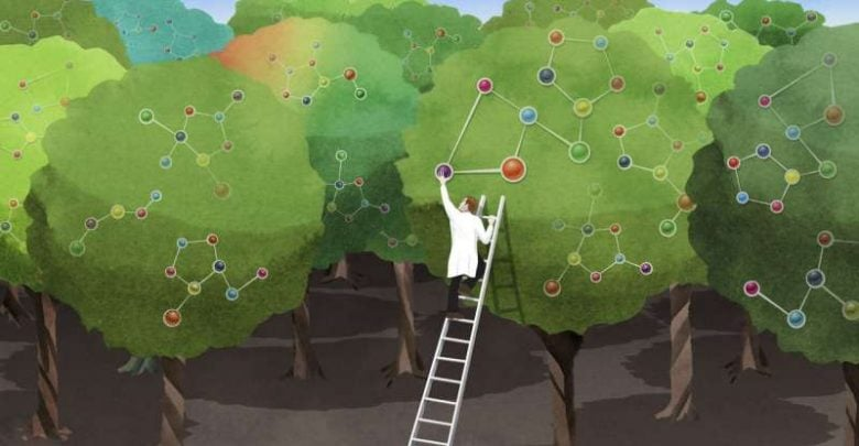 Large-scale approach reveals imperfect actor in plant biotechnology - اخبار زیست فن