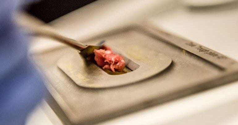 New technique can detect impurities in ground beef within minutes - اخبار زیست فن