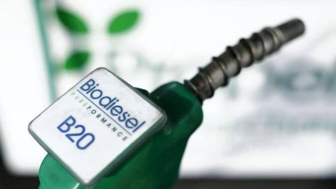 Biodiesel 2016/2017 - Report on Progress and Future Prospects