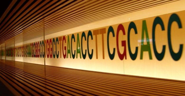 Scientists evaluate risks of gene editing - اخبار زیست فن