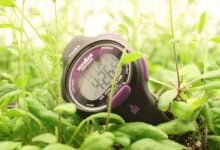 Studying circadian rhythms in plants and their pathogens might lead to precision medicine for people - اخبار زیست فن