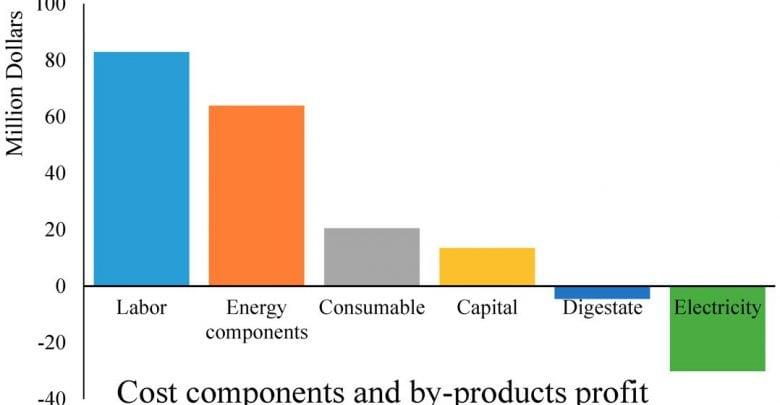 سوخت زیستی از جلبک دریایی از نظر اقتصادی - اخبار زیست فناوری
