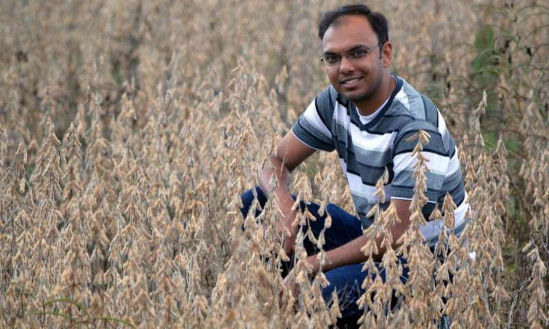 Using satellites to improve crop yield estimates - اخبار زیست فن