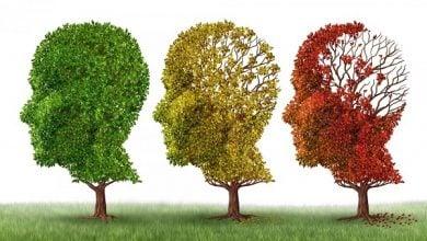 Photo of کمبود ویتامینc و اختلال عملکرد میتوکندری در بیماری آلزایمر