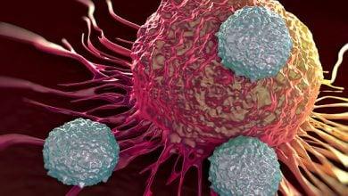 Photo of اهمیت توجه جدی دولتها به سرمایهگذاری در نشانگرهای زیستی انواع سرطان