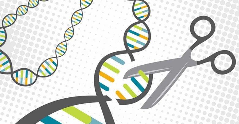 CRISPR Does it Again! Gene Editing Tool Identifies a New Leukemia Target