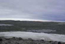 Photo of راز میکروبهای قطب جنوب