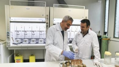Photo of UAE University scientists test potential of date palms as source of biodiesel