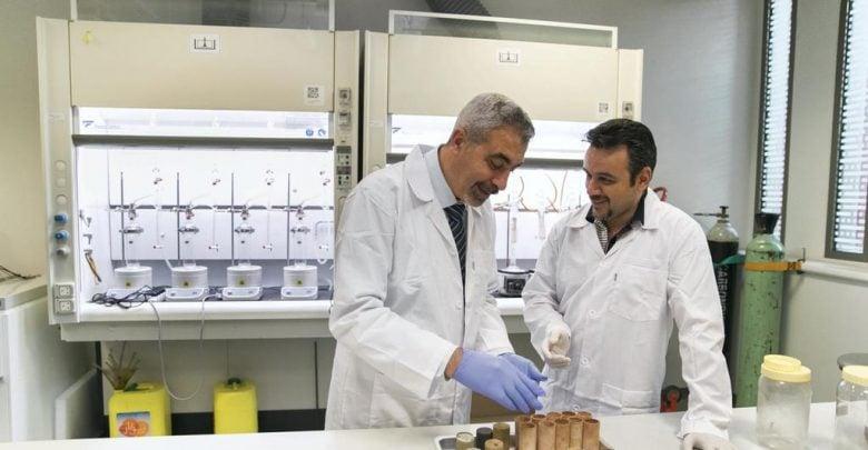 اخبار زیست فناوری-UAE University scientists test potential of date palms as source of biodiesel