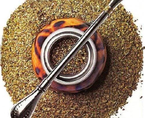 اثرات مفید چای یرباماته بر انرژی سلولی و کنترل وزن - اخبار زیست فناوری