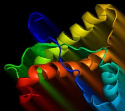 ابتلا به اختلالات پریونی زیرپوستی - زیست فن