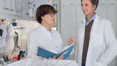 Photo of مهمترین سرکوب کننده تومور در سلول های ایمنی کشف شده است