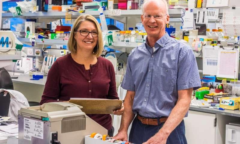 ایمونوتراپی، پیشرفت های ویرایش ژن دیابت نوع 1 گسترش می یابد_اخبار زیست فناوری