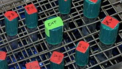 باکتری ها چگونه سازگاری پیدا میکنند؟!_اخبار زیست فناوری