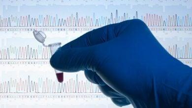 Photo of تنوع ژنتیکی آفریقا برای رفع حساسیت به بیماری