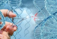 Photo of Charles River Labs Licenses CRISPR/Cas9 IP from ERS Genomics