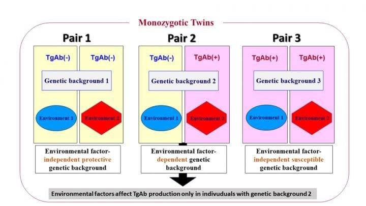 بیماری های ایمنی دوقلوهای یکسان را متفاوت به وجود می آورند_اخبار زیست فناوری