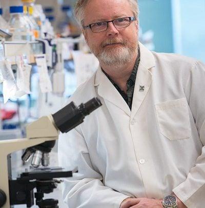 درک تازه از علت حرکت سلولهای سرطانی-زیست فن