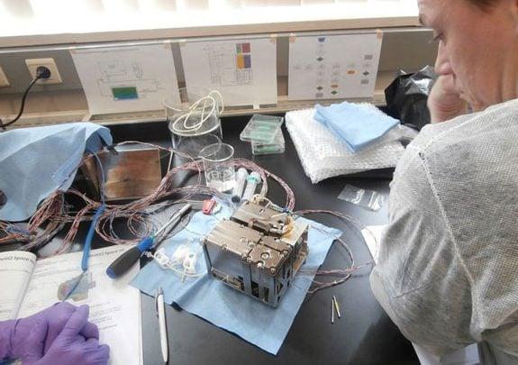افزایش اکسیژن اسپرالینا در فضا - اخبار زیست فناوری