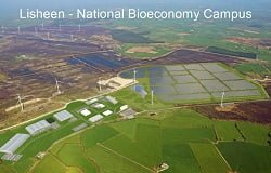 Irish Bioeconomy Foundation