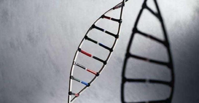 توالی DNA نتیجه کمبود آنتی تریپسین آلفا 1 را مشخص می کند_اخبار زیست فناوری