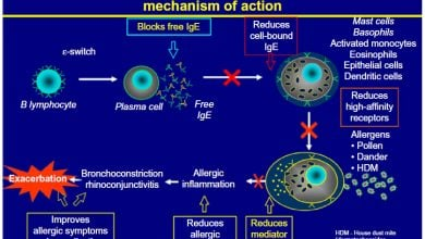 Photo of Omalizumab improves efficacy of oral immunotherapy for multiple food allergies